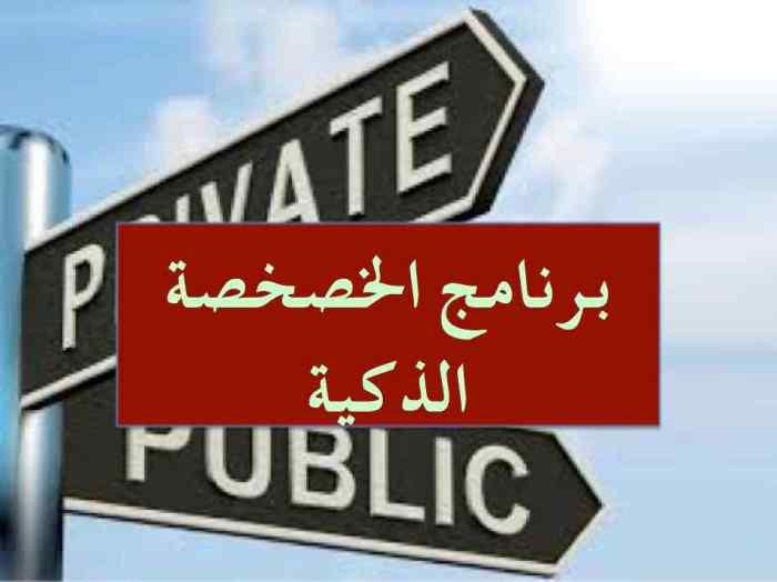 privatisation 4