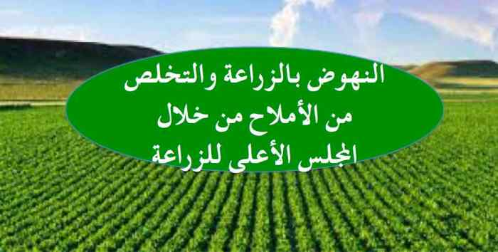 الزراعة ٢